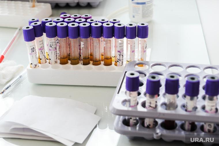 Треть жителей ЯНАО с коронавирусом победила болезнь