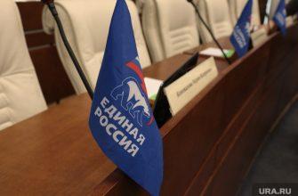 предварительное голосование единороссы Пермский край