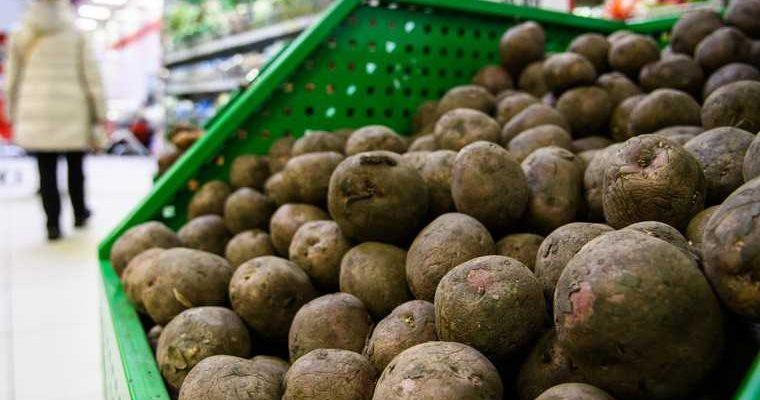 недозревшие гнилые овощи фрукты косточки ягоды вред
