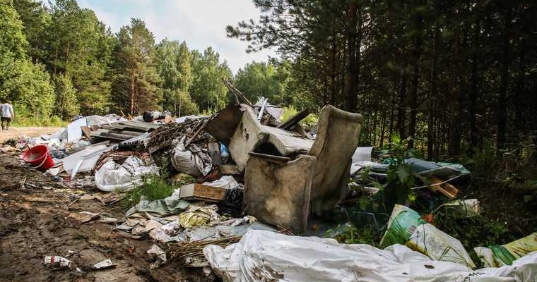 свалки мусора ЯНАО лесные массивы