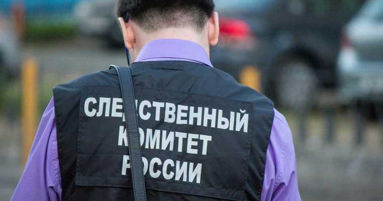 СКР назвать цель нападение дом Юрия Пескова Ростсельмаш
