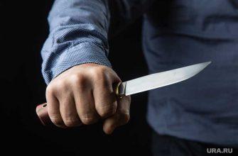 Екатеринбург студент колледжа лев иванов убил несовершеннолетнюю приговор