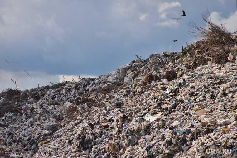 В центре Тобольска нашли свалку