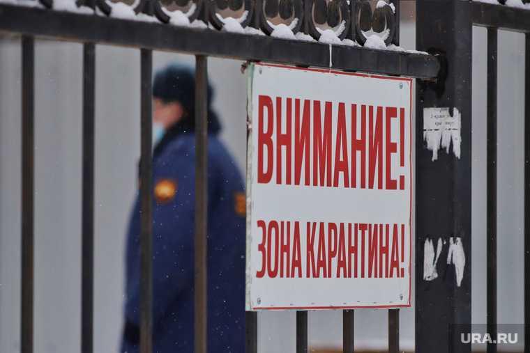Челябинская область коронавирус статистика