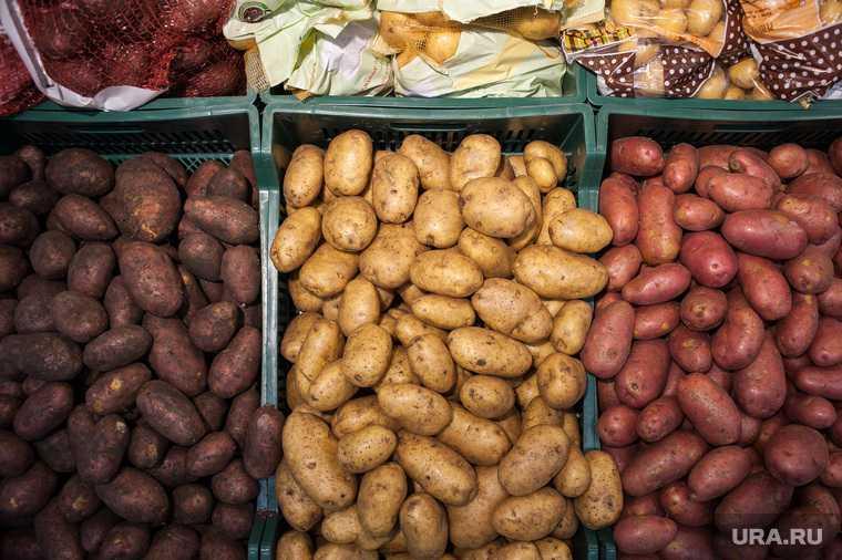 цена картофель магазин рост