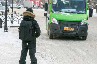 госдума проезд запрет высаживать школьники