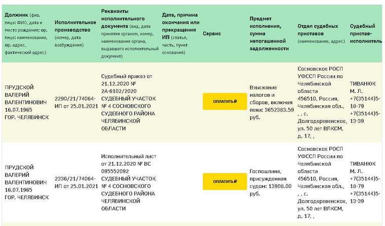 Экс-министру Челябинской области грозит банкротство. Скрин