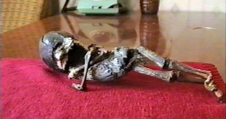 кыштымский карлик гуманоид Алешенька комикс сбор средств деньги фото скрин рисунки