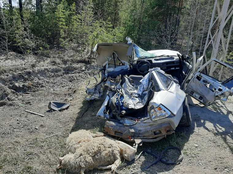 На трассе под Курганом грузовик протаранил стоящую машину. Погиб ребенок. Фото