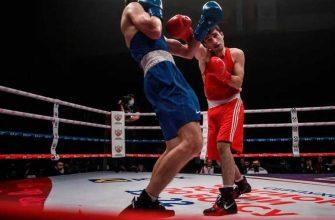 Федерация бокса России новости