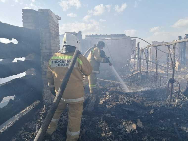 Из горящей курганской фермы эвакуировали животных. Фото